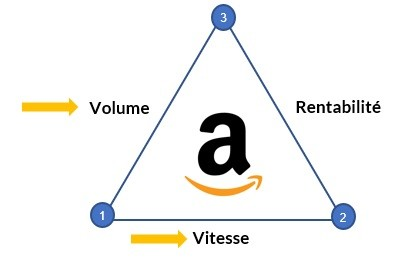 strategie Amazon