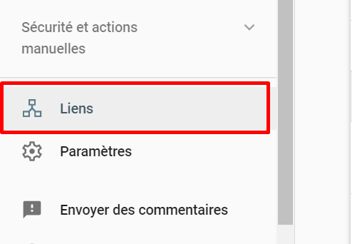 Section liens Search Console