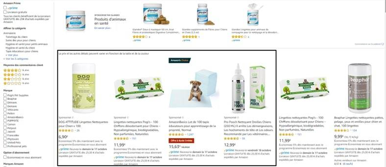 amazon ads sponsored products exemple
