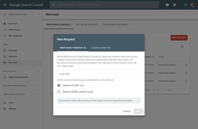suppression temporaire search console options