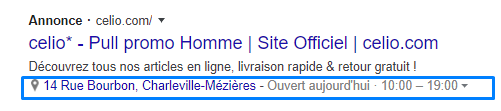 exemple extension de lieu google ads